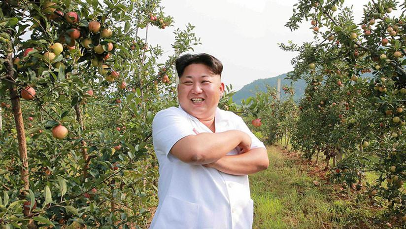 """""""Me esfuerzo mucho para ser su amigo"""": Trump ofendido dice que nunca llamaría a Kim """"bajo y gordo"""""""