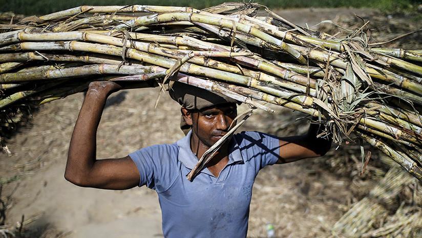 Así esclaviza en pleno siglo XXI una compañía azucarera