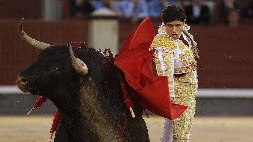 Esta vez ganó el toro: un joven torero mexicano recibe una cornada en el escroto (FUERTE VIDEO)