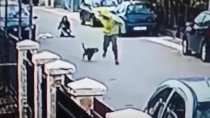 'La Patrulla Canina': Un perro salva a una mujer de un robo mordiendo al ladrón en los glúteos