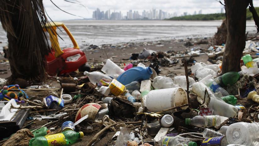 Videos desgarradores: La contaminación plástica del hombre acaba con magníficas criaturas marinas