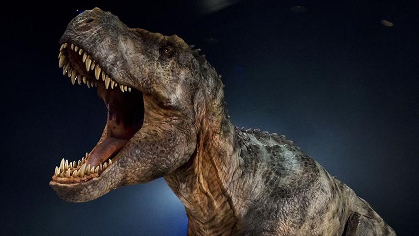 """""""Es la primera vez desde hace 66 millones de años que este sonido se oye en la Tierra"""""""
