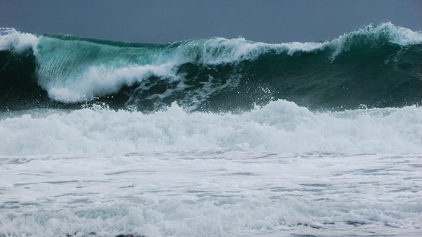 Mujer se lanza contra las olas para salvar a su perro