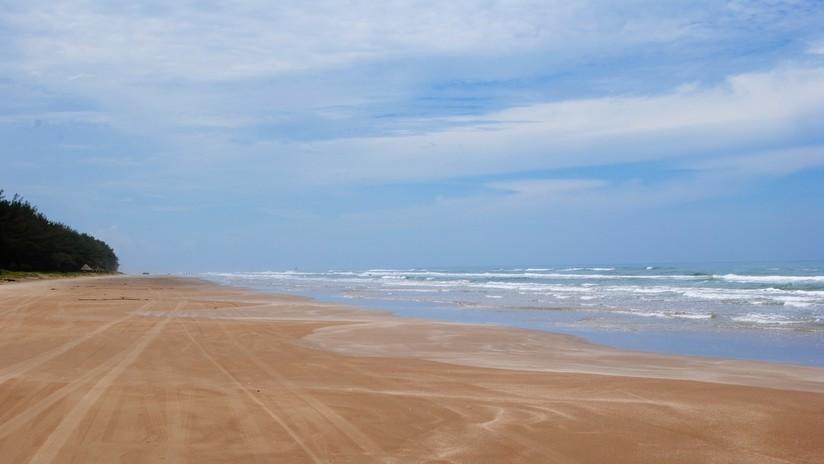 """Hallan una misteriosa y """"horrible"""" criatura dentada en una playa de Australia"""