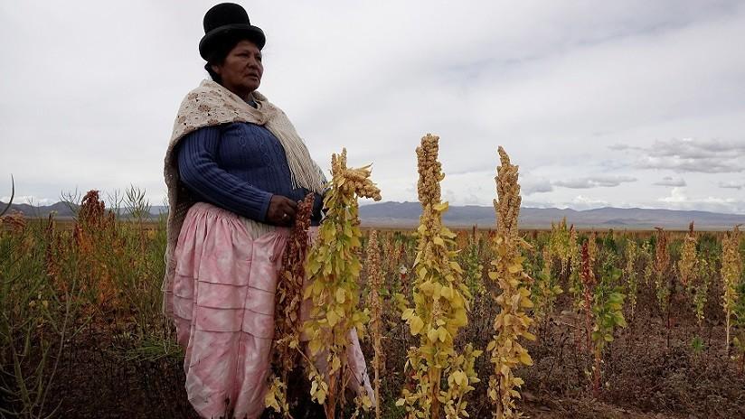 Este país es el mayor productor del 'súper alimento' latinoamericano crucial para combatir el hambre