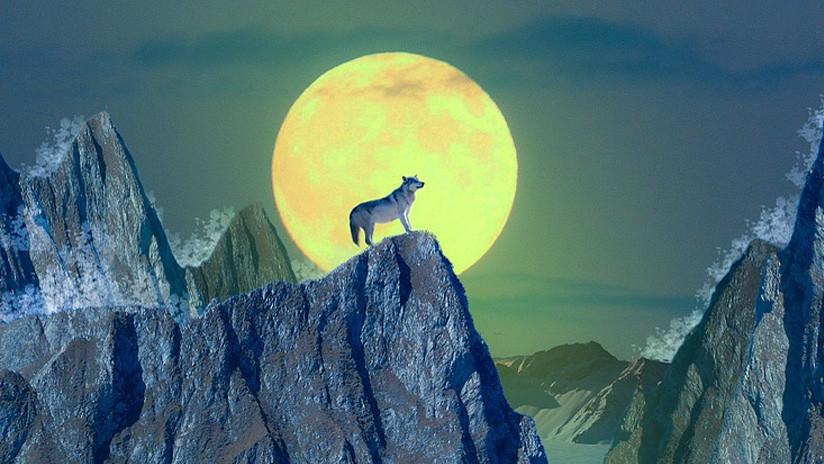 La luna 'del lobo' de este 1 de enero será la superluna más grande y brillante del año