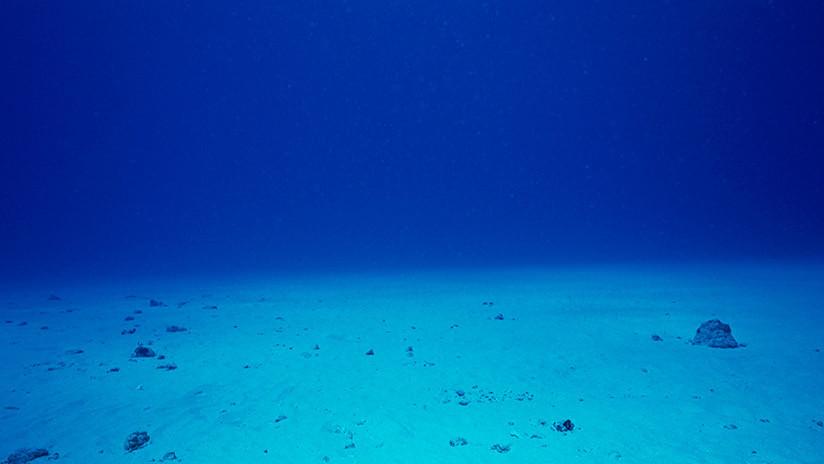 Alarma científica: Esta es la razón por la que se está hundiendo el fondo del mar