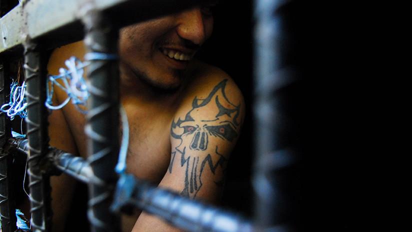 EE.UU.: Miembros de la Mara Salvatrucha, acusados de asesinar a machetazos a un adolescente