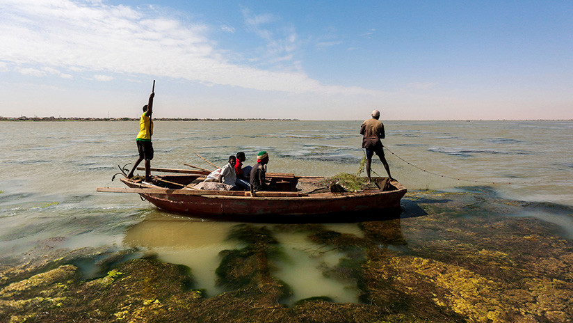 El Nilo se calienta: El gran conflicto entre dos naciones desestabiliza a África