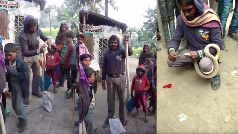 VIDEO: Una cobra muerde mortalmente a un hombre que intentaba coserle las mandíbulas