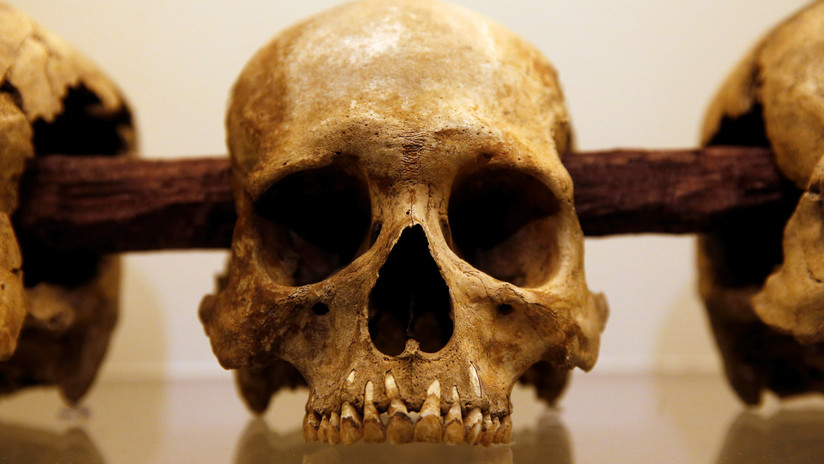 Descubren al culpable de la peste que causó el colapso de la civilización azteca