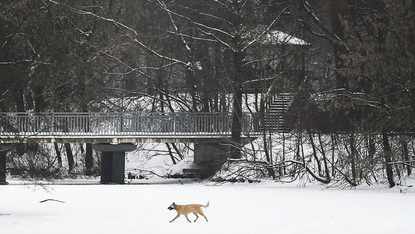 6 minutos de sol:  El primer mes invernal fue el más oscuro en la historia de Moscú