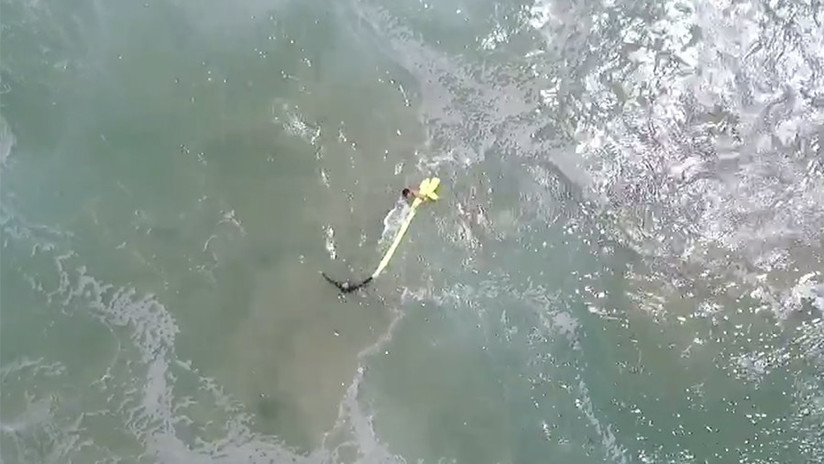 Un dron rescata por primera vez a dos surfistas atrapados por el oleaje en Australia (VIDEO)