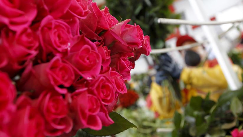 ¡Que viva el amor! 15.000 toneladas de flores saldrán desde Quito para San Valentín