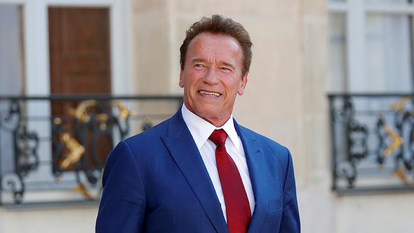 Nueva especie de mosca fue bautizada en honor a Arnold Schwarzenegger