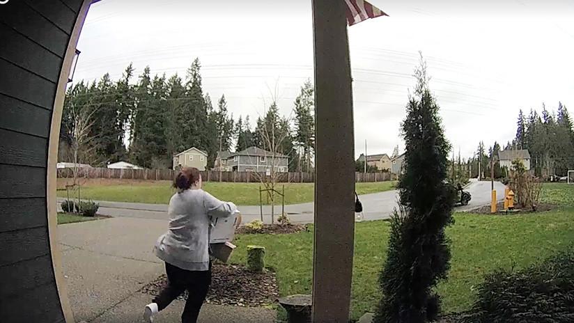 Karma instantáneo: Una mujer se daña un tobillo tratando de robar envíos de correo (VIDEO)