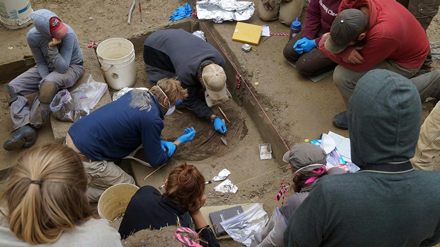 Miembros del equipo de arqueología observan cómo los profesores de la Universidad de Alaska Fairbanks Ben Potter y Josh Reuther excavan en el sitio de Upward Sun River.