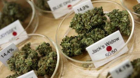Dispensario muestra costo y potencia de marihuana medicinal en sucursal de Oakland, California. 30 de junio de 2010.
