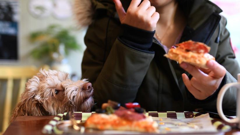 Confirmado por científicos y dietistas: Es más sano desayunar pizza que un plato de cereales