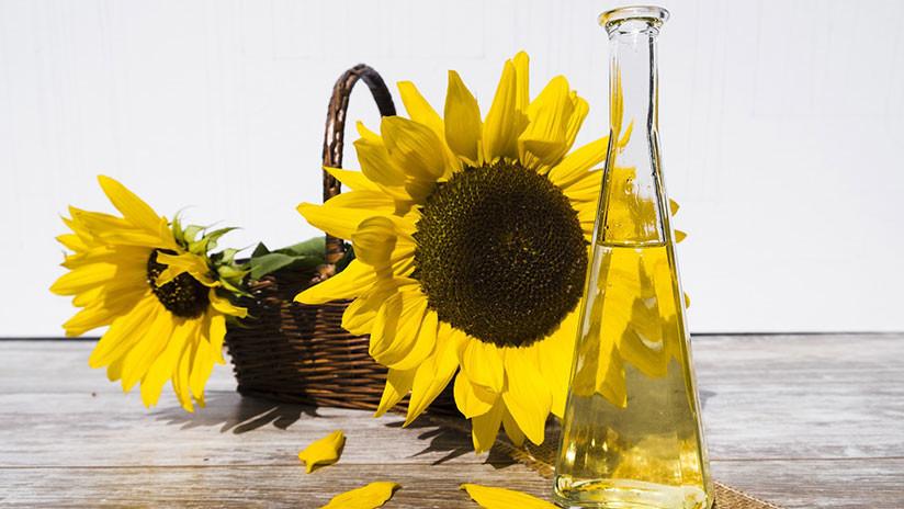 Estudio inquietante: El aceite de girasol puede causar cáncer de hígado