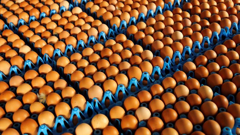 La selección de Noruega recibe por error 15.000 huevos en los JJ.OO. de Pyeongchang