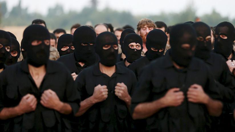 La yihad global: ¿Es posible una fusión entre el Estado Islámico y Al Qaeda?