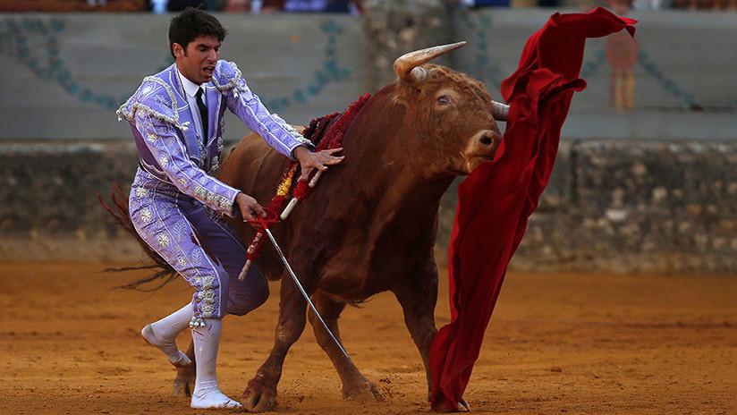 La ONU recomienda a España que no permita que los menores vean corridas de toros