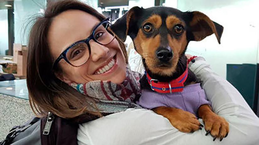Una patinadora canadiense salva a perros criados para ser comida en Corea del Sur