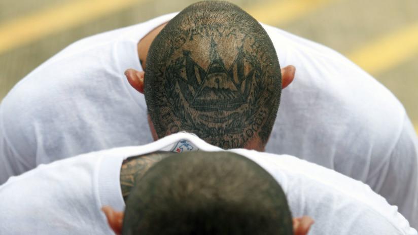 Tres miembros de la MS-13 son sentenciados por ejecutar a un menor en Nueva York