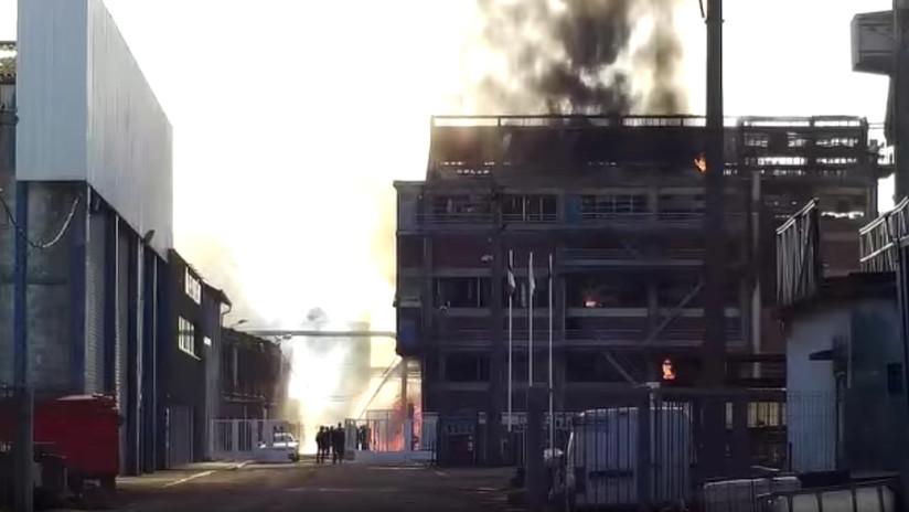 VIDEO: Al menos 2 muertos en una gran explosión en fábrica de semillas oleaginosas en Francia