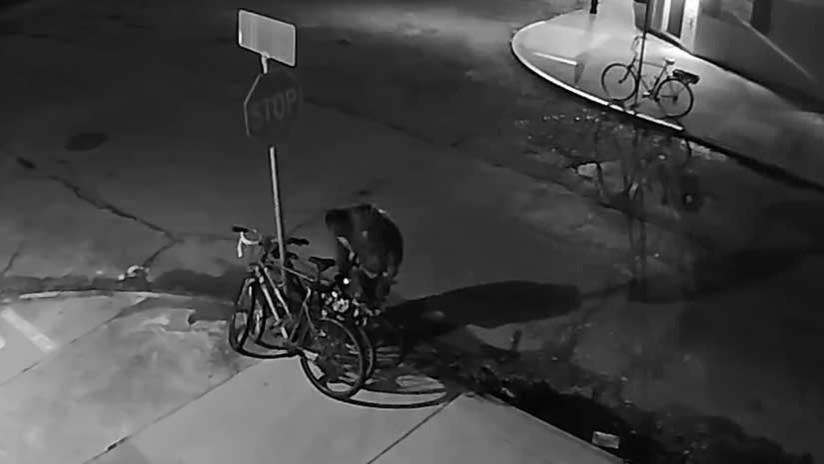Paciencia y dedicación: Un ladrón desmonta una señal de tránsito para robarse una bicicleta (VIDEO)