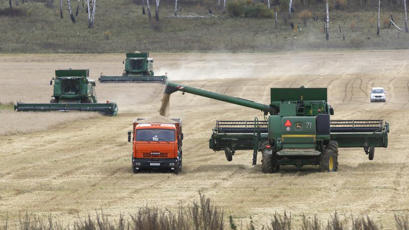 Camino al récord: La exportación de granos rusos se acerca a 50 millones de toneladas