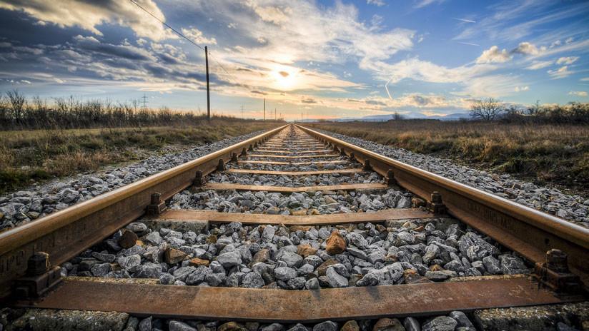 España: Al menos 20 perros mueren arrollados por trenes tras ser atados a las vías