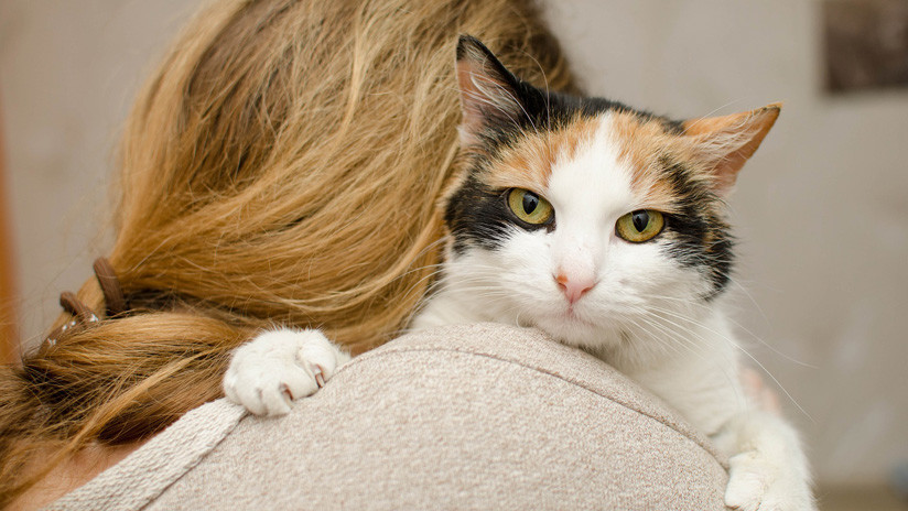 VIDEO: Una modelo se tatúa a su gato con tinta obtenida del pelo de su mascota