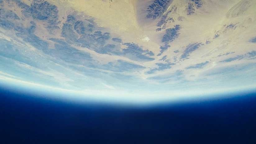 Alertan de que la Tierra está amenazada por una extinción global