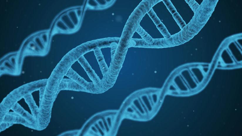 Dos españoles crean una aplicación para utilizar el ADN como 'disco duro'