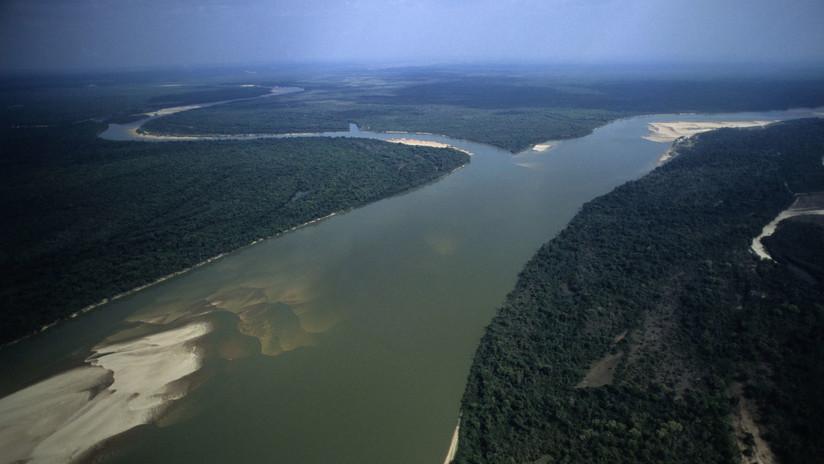 Decenas de geoglifos revelan una civilización perdida en plena Amazonia