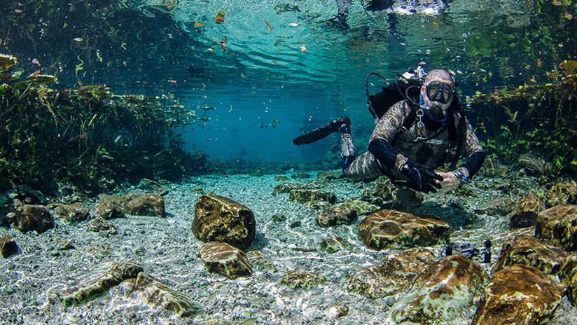 Descubren caverna con fragmentos prehispánicos durante la limpieza de un cenote en México (FOTOS)