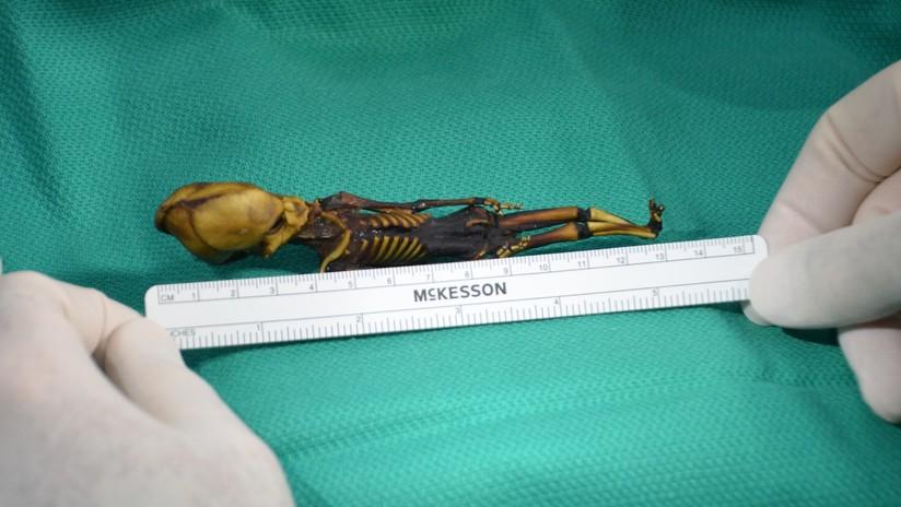 Científicos chilenos estiman ilegal el estudio que descartó que la momia Ata es un 'alien'