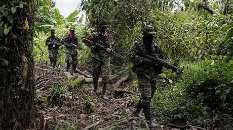 Milicianos del Ejército de Liberación Nacional de Colombia patrullan una zona selvática del noroeste de Colombia, el 31 de agosto de 2017.
