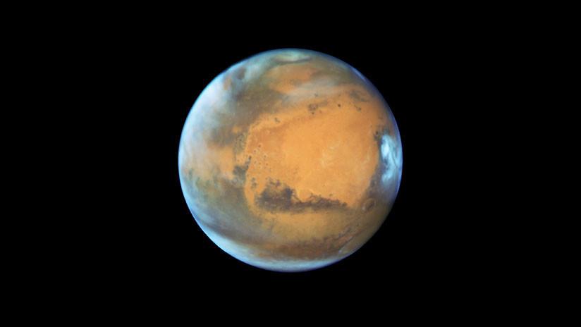 La NASA financia un proyecto para llevar abejas robóticas a Marte