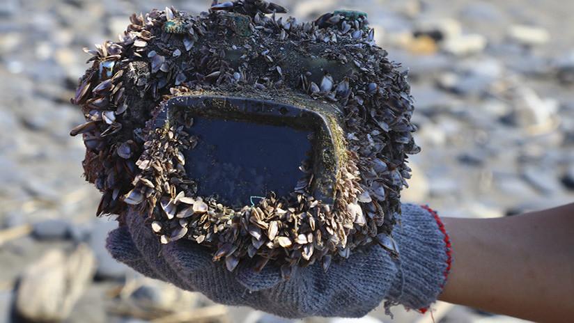 FOTOS: El increíble viaje de una cámara que pasó 2 años perdida en el mar y regresó a su dueña