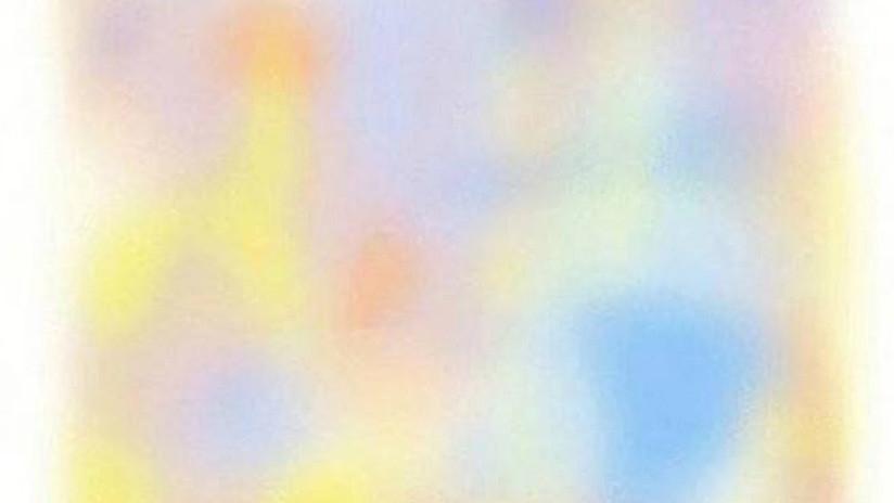 Una imagen que se desvanece en unos segundos por una ilusión óptica se viraliza en la Red