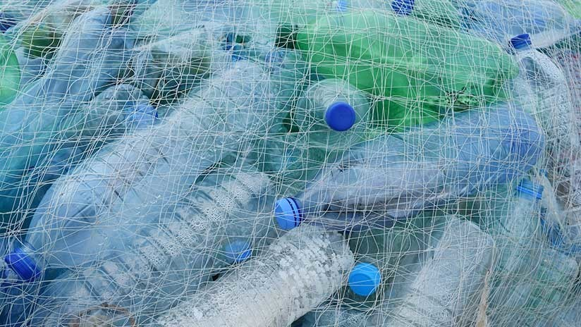 ¿Planeta salvado?: Científicos crean accidentalmente una bacteria que puede devorar plástico