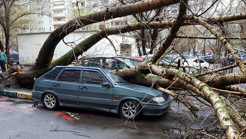 FOTOS, VIDEOS: Una niña muerta y varios heridos por una fuerte tormenta en Moscú