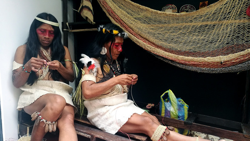 Las mujeres que se asociaron en la amazonía ecuatoriana contra la caza y la expansión petrolera
