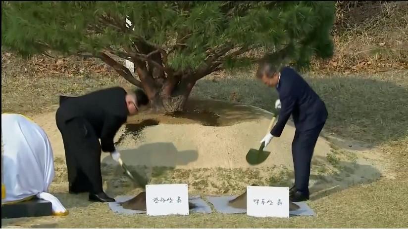 VIDEO: Los líderes de las dos Coreas plantan un árbol en la frontera como símbolo de paz
