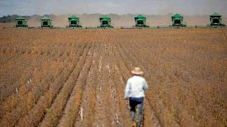 Las cosechadoras operando durante la ceremonia de inauguración de 'Grain Harvest' en Caseara (Brasil). 15 de febrero de 2018.