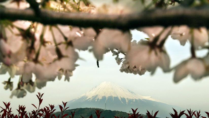 """""""Si no lo hubiera vivido, no lo creería"""": Halló a su madre biológica en Japón después de 45 años"""