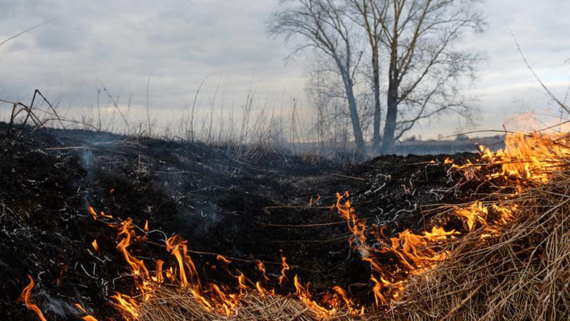 VIDEOS: Explotan varios proyectiles de artillería ocultos en un prado en los Urales